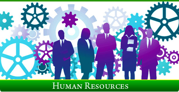 Division Of Human Resource
